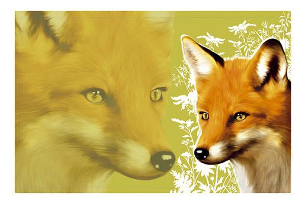 Fußmatte Gallerymatte Fuchs – günstig und gut